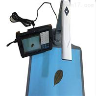 YMJ-C拍照式叶面积测试仪