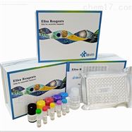 小鼠胆碱磷酸甘油酯(PC)酶联免疫试剂盒