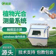 FT-GH30-2植物光合作用测量系统