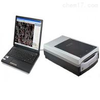 SDMW-A扫描版大米外观品质检测仪系统