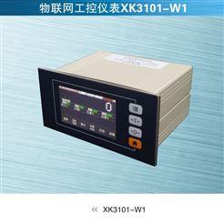 XK3101-W1寧波柯力XK3101工控儀表