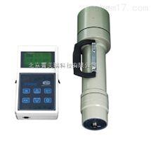 GH-102A环境x.y剂量率仪