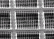 quantifoil TEM grids载网