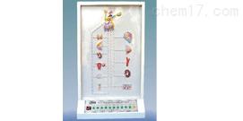 下丘脑与垂体激素对靶器官作用电动模型