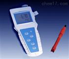 JPBJ-608便攜式溶解氧分析儀