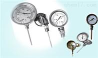 双金属温度计厂家WSS-581万向型双金属温度计