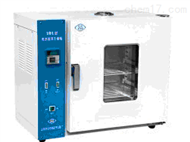HG19-202-1ES电热恒温干燥箱