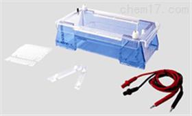 琼脂糖水平电泳仪 琼脂糖水平电泳仪 桥式设计水平电泳槽