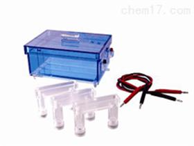 蛋白质回收电泳仪 蛋白质回收电泳分析仪 回收电泳槽