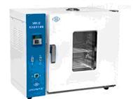 HG19-202-1ES电热恒温干燥箱 恒温干燥箱   电热灭菌器