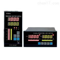 无纸记录仪WP-R80A/B