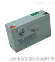 6V10Ah电子吊秤电池