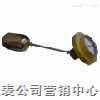 上海液位仪表厂浮球液位计