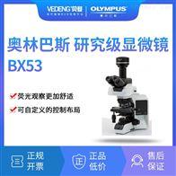 OLYMPUS奥林巴斯 研究级显微镜 BX53三目