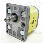 VIVOIL单向液压泵 9RD0325 RV-1D/3,8x3
