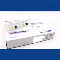 HBIG13HBI大肠杆菌生化鉴定条
