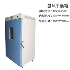 DHG-9920A鼓风干燥烘箱