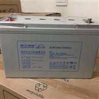 12V50AH理士蓄电池FT12-50
