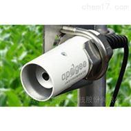MI220手持式红外测温仪