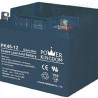 12V45AH三力蓄电池PK45-12正品
