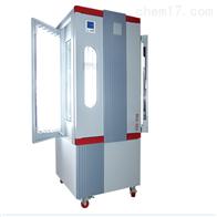 BSG-300博迅光照培养箱