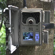 DTC-999V 物候相机 生态红外夜视自动监测仪