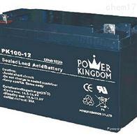 12V100AH三力蓄电池PK100-12免维护