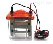 Mini VE1600迷你垂直電泳槽