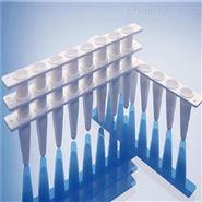 0.1ml定量PCR专用白色8联管含光学平盖