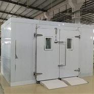 深圳步入式恒温恒湿试验室