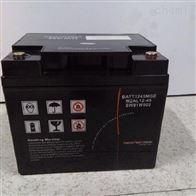 12V45AH梅兰日兰蓄电池M2AL12-45代理商
