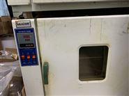 电热鼓风干燥箱