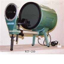 WZY-250玻璃制品应力检查仪