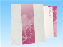 Ⅰ型胶原C端肽ELISA试剂盒