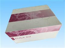 Ⅰ型前胶原N端前肽ELISA试剂盒