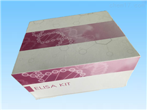 白介素28BELISA试剂盒
