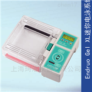 Endruo Gel XL迷你电泳系统E0160-230V