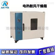 101-2電熱鼓風干燥箱