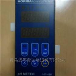 HORIBA日本堀场HE-480H工业用电导率计