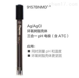 Ag/AgCl pH 电极