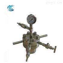CJF-0.1小型高壓反應釜