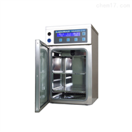 赫尔纳-供应德国labotect二氧化碳培养箱
