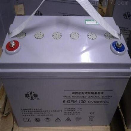 双登铅酸免维护蓄电池 12V100AH