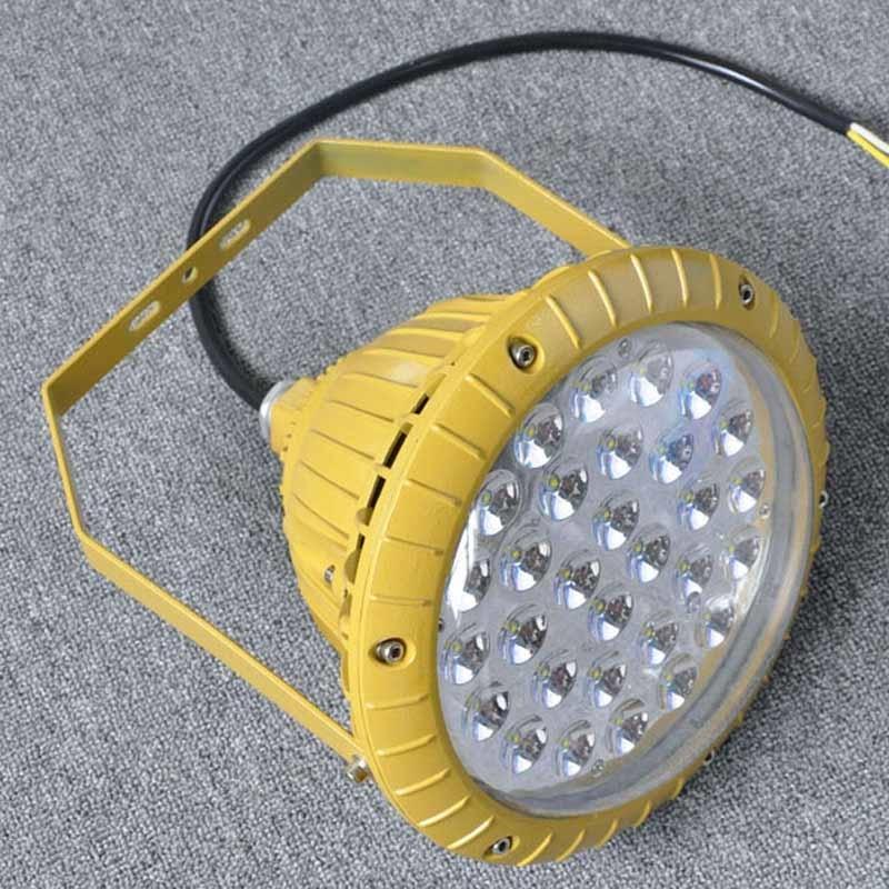 RLB156食品厂led防爆灯80W照明灯EX