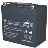 12V55AH三力蓄电池PK55-12机房电源
