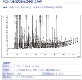PONA柱对汽油样品中芳烃分析