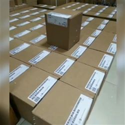 6ES7313-6CG04-4AB1鄂州西门子S7-300PLC模块代理商