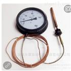 溫度計 DL-YB-2701