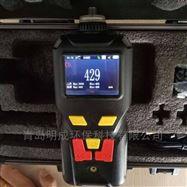 LB-MS4X便携式硫化氢气体检测仪