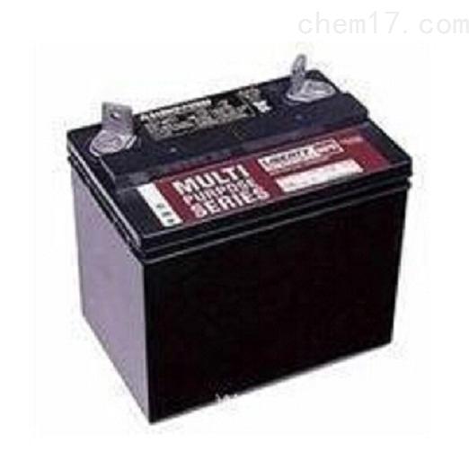 大力神蓄电池MPS12-40全新
